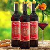 Výhodné balení 3 lahví Nero d'Avola Sicília DOC